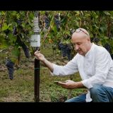 Enrico Orlando progetto Ixem Lab in vigneto - Ixem Lab project in the vineyards_photo_davidegreco.net